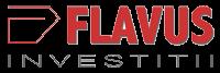 Flavus Energie Electrică Distribuție